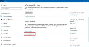 Cara Limit Bandwidth Windows Update